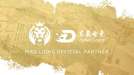 MAD Lions acquire Chinese betting sponsor DYVIP